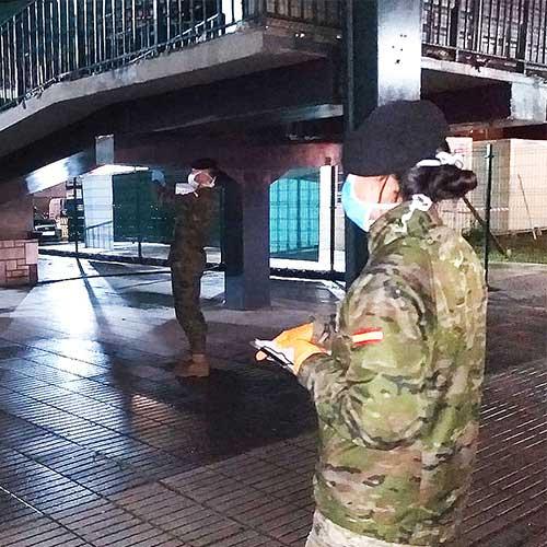 colaboración de los servicios de seguridad privada y el ejército frente al coronavirus en España