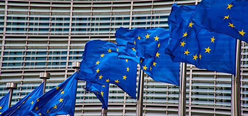 servicios de seguridad con Fondo de Seguridad Europeo